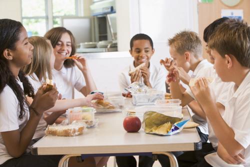 La obesidad y el rendimiento académico se encuentran entre las principales preocupaciones de la mala nutrición en los almuerzos de los estudiantes.