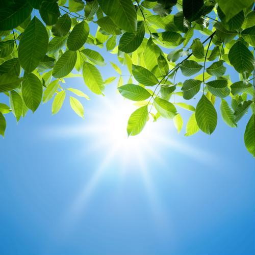 Contrariamente a la creencia popular, el protector solar no es su mejor opción de protección.